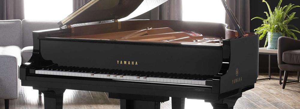 钢琴、声乐专业远程…